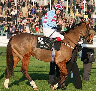 Sublimity (horse) French-bred Thoroughbred racehorse