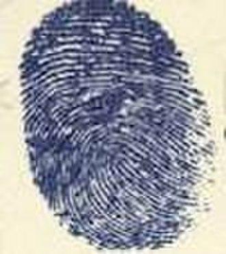 Blue Thumb Records - Image: Bluethumblogo