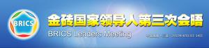 3rd BRICS summit - Logo of the 2011 BRICS summit