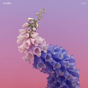 Skin (Flume album) - Image: Flume Skin