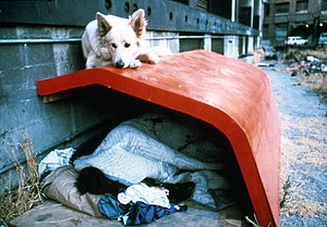 Jon Peterson (artist) - Los Angeles Shelter number two, downtown Los Angeles, 1979