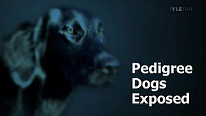 Pedigree Dogs Exposed - Image: Pedigree Dogs Exposed