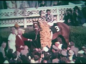Secretariat (horse) - Secretariat in the winner's circle after the Preakness, with Ron Turcotte, Lucien Lauren, Eddie Sweat and Penny Chenery (then Tweedy)