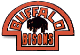 Buffalo Bisons (IHL) - Image: Buffalo bisons 1933 34