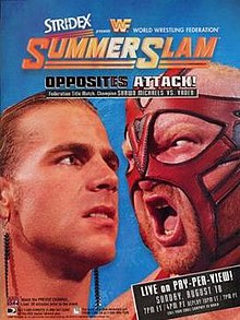 Image Result For Summerslam Results