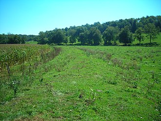 Galena and Southern Wisconsin Railroad - Image: Old roadbed near the Buncombe Tunnel, Galena and Southern Wisconsin Railroad (2007)