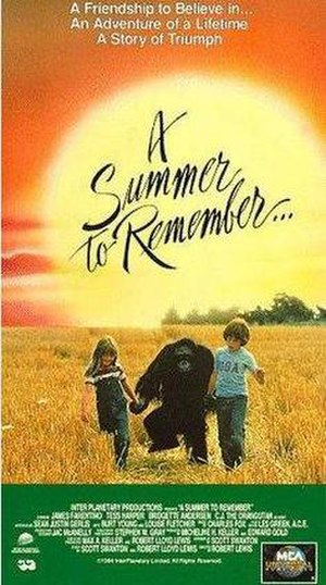 A Summer to Remember - Image: A Summer to Remember TV 513167045 large