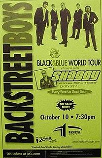 Black & Blue Tour