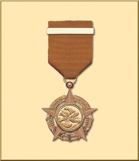 Bronze Bauhinia Star