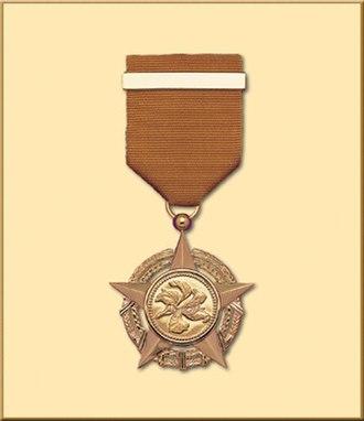 Bronze Bauhinia Star - Image: Bbs HK