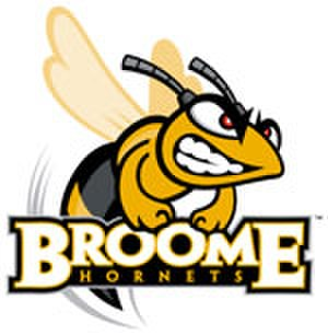 SUNY Broome Community College - Image: Broome Community College Hornets logo