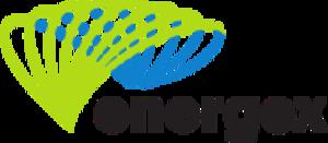 Energex - Energex logo