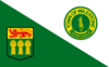Flag of Town of Milestone