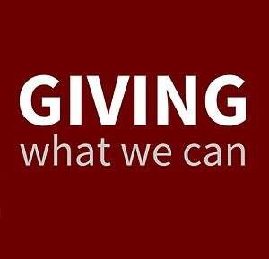 Giving What We Can - Image: Giving What We Can text logo