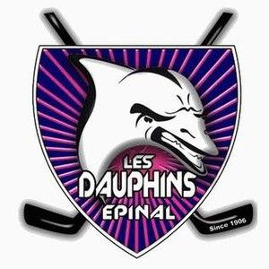 Gamyo d'Épinal - Image: Logo Dauphins d'Epinal 2009