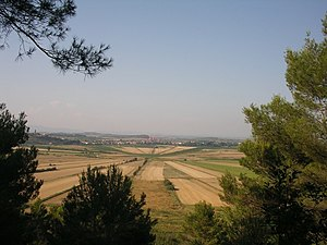 Oppidum d'Ensérune - The fields at Montady