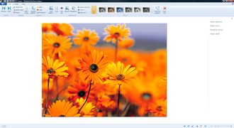 Windows Essentials - Photo Gallery 2011 with the ribbon user interface displaying numerous image editing options.