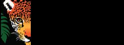 Rainforest Trust logo.png
