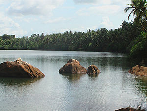 Souparnika River - Tranquil waters of Souparnika River.