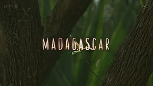 Madagascar (TV series) - Series title card from UK broadcast