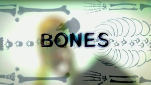 Bones (TV series) - Image: Bones title card