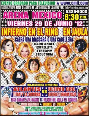 Infierno en el Ring (2012) - Official poster of the event