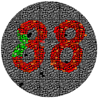 38 (number) - Most people will see the number 38, but people with red-green color blindness might see 88 instead.