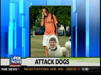 Fox News controversies - Image: FNC Controversy Poodle