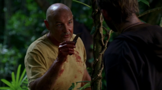 The Moth (<i>Lost</i>) 7th episode of the first season of Lost