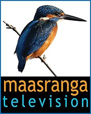 Maasranga Television Logo.jpg