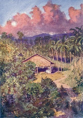 Sulu - Image: Sulu house & coconut plantation
