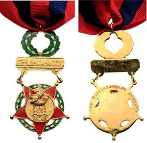 Distinguished Conduct Star - Image: The AFP Distinguished Conduct Star Medal