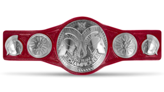 WWE Raw Tag Team Championship Championship created and promoted by the American professional wrestling promotion WWE