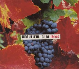 Beautiful Girl (INXS song) - Image: Beautiful Girl (INXS single cover)