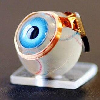 Artificial organ - Image: Bionic Eye