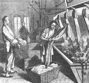Chinese Hand Laundry Alliance - Image: Chinese Laundry 1881