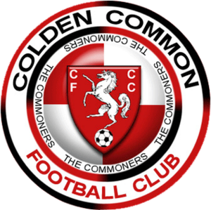 Colden Common F.C. - Image: Coldencrest