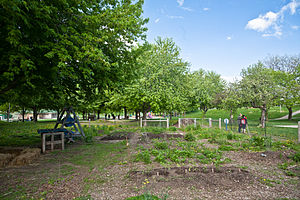 Christie Pits - The community garden in Christie Pits