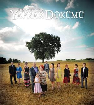 Yaprak Dökümü (TV series) - Image: Fall of the leaves TV series cover