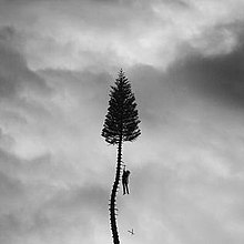 Manchester Orchestra - A Black Mile to the Surface.jpg