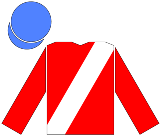 Russian Rhythm American-bred Thoroughbred racehorse