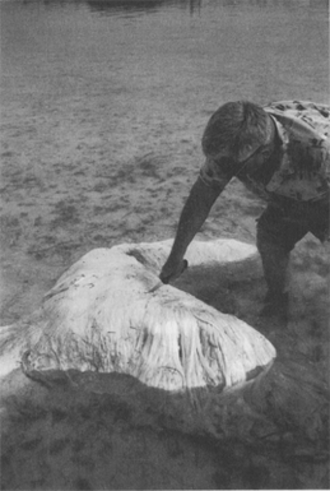 Bermuda Blob - Teddy Tucker with the 1988 Bermuda Blob