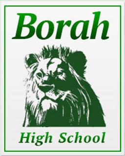 Borah High School Public school in Boise, Idaho, U.S.