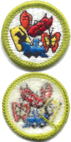 Collections merit badge, type H.png