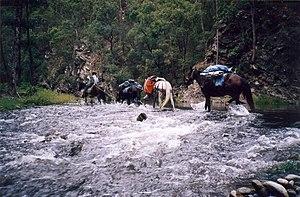 Bicentennial National Trail - Georges Creek