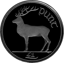 £1 coin (reverse) Red deer