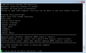 mplayer running from a command line prompt, vi...