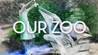 Picture of a TV show: Our Zoo