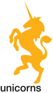 Unicorns (cricket team)
