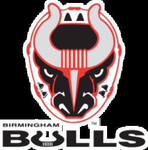Birmingham Bulls (ECHL) - Image: Birmingham Bulls